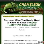 Chameleon Care Information – Preserving and Breeding Wholesome Chameleons Made Simple!