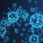 Enchancment of your immune system