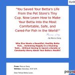 Betta Fish – Study How one can Give Your Betta a Nice Life!