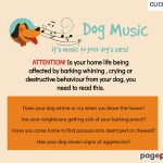 Enjoyable Canine Music – Canine Nervousness Assist, Fixing Crying, Whining and Barking issues